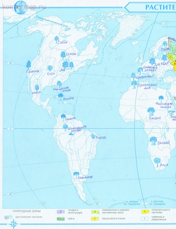Контурные карты по природоведению 5 класс ответы карта полушарий