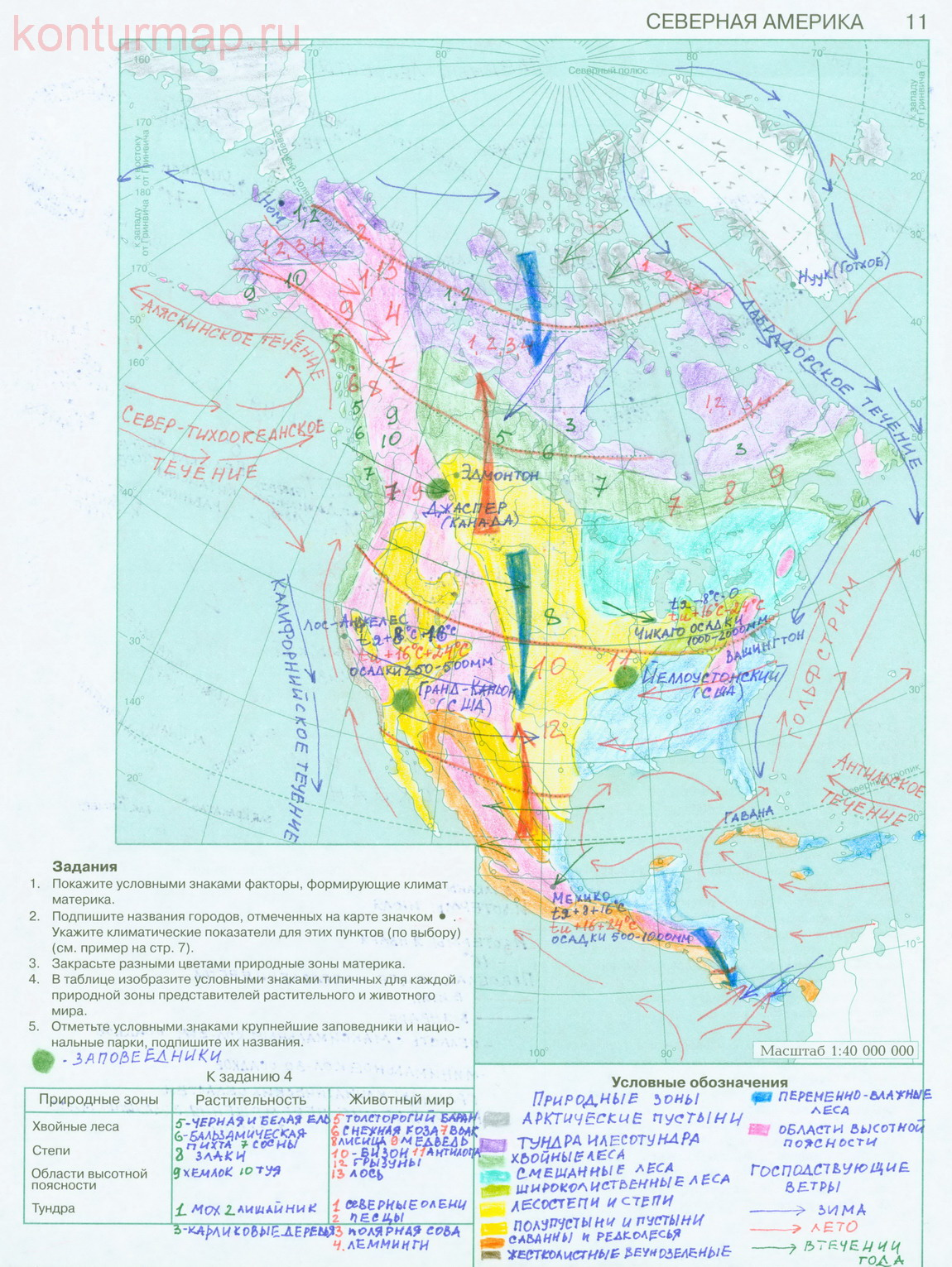 Контурная карта 7 класс по географии природные зоны африки